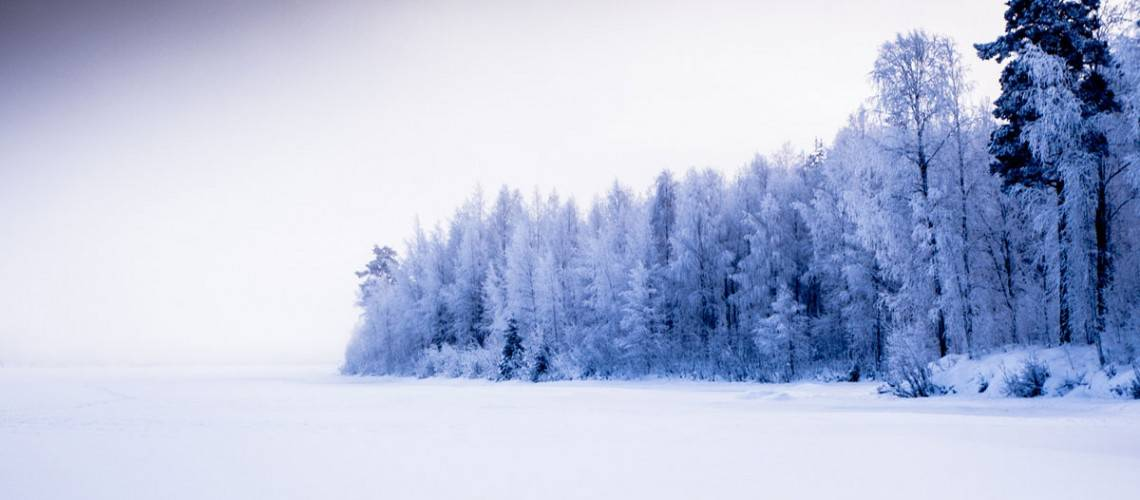 Best Lapland Tour Operators
