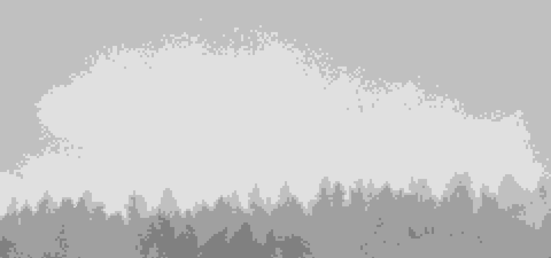 woods, skog, ted logart, 1280 x 1638