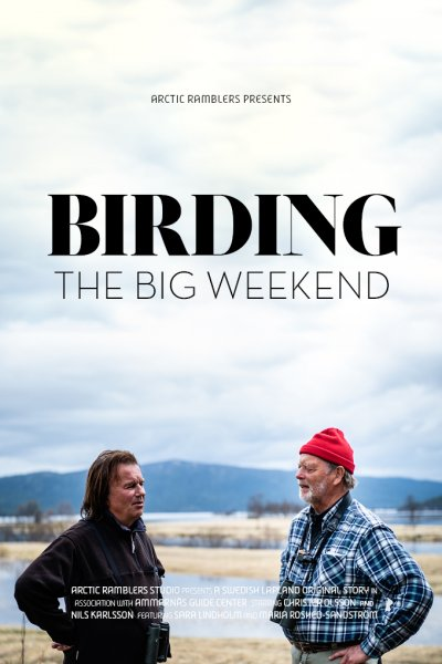video poster birding