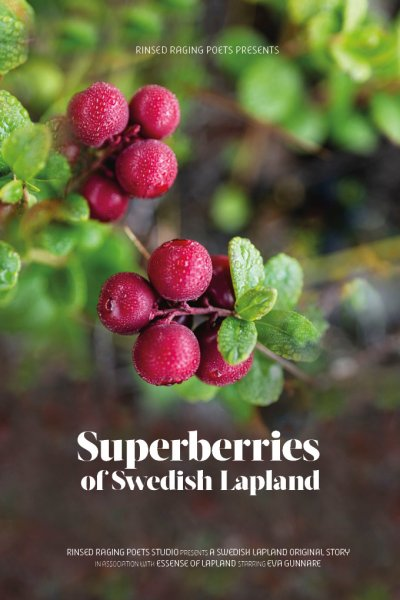 video poster super berries