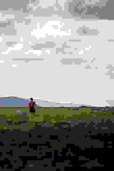880 x 1314, ted logart, trail running